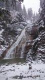 Cascada en invierno Foto de archivo libre de regalías