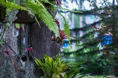 Cascada en jardín Fotografía de archivo