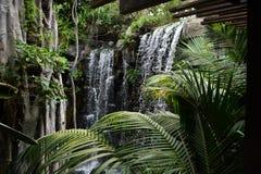 Cascada en jardín Imagen de archivo libre de regalías
