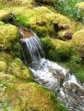 Cascada en jardín japonés Foto de archivo