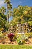 Cascada en jardín tropical Fotografía de archivo libre de regalías
