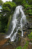 Cascada en la isla de Miguel del sao - Azores Imagenes de archivo