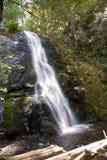 Cascada en la pequeña cala de la cascada del río Imagen de archivo libre de regalías