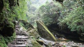 Cascada en la ruta del senderismo de Ghorepani Ghandruk en el Himalaya, Nepal almacen de video