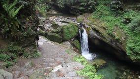 Cascada en la ruta del senderismo de Ghorepani Ghandruk en el Himalaya, Nepal almacen de metraje de vídeo