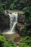 Cascada en la selva Imagen de archivo
