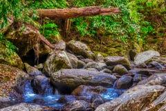 Cascada en la selva de Tailandia Palau fotos de archivo