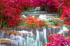 Cascada en la selva profunda de la selva tropical (Huay Mae Kamin Waterfall) imagen de archivo libre de regalías