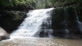 Cascada en la selva tropical almacen de metraje de vídeo