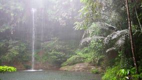 Cascada en la selva tropical de Borneo en día lluvioso metrajes