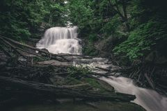 Cascada en la selva virgen de Canadá imágenes de archivo libres de regalías