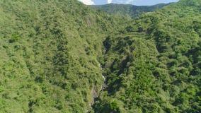 Cascada en las montañas Montañas con selva tropical Las montañas están cubiertas de espesa selva almacen de metraje de vídeo