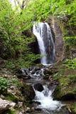 Cascada en las montañas de Tesnei, Rumania Foto de archivo libre de regalías