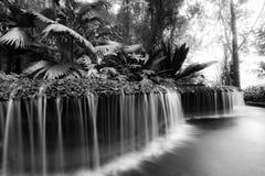 Cascada en los jardines botánicos Imagen de archivo libre de regalías