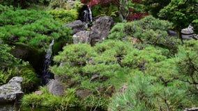 Cascada en los jardines con los árboles verdes metrajes