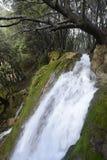 Cascada en Mallorca Fotografía de archivo