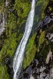 Cascada en Milford Sound Foto de archivo