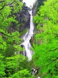 Cascada en montaña foto de archivo