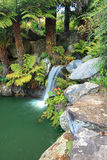 Cascada en Mt Tomah Imagen de archivo libre de regalías