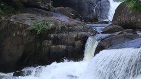 Cascada en Nakornnayok, Tailandia almacen de video