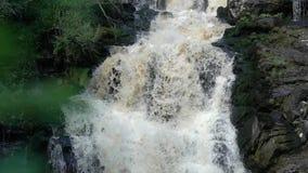 Cascada en naturaleza salvaje almacen de video