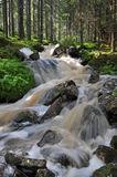 Cascada en naturaleza sueca Foto de archivo libre de regalías