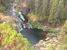 Cascada en Oregon Imagen de archivo libre de regalías