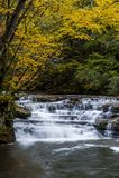 Cascada en otoño - Campbell Falls, parque de estado de la cala del campo, Virginia Occidental fotos de archivo