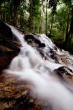 Cascada en parque de naturaleza Fotos de archivo libres de regalías