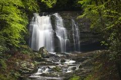Cascada en parque nacional de la montaña ahumada Foto de archivo libre de regalías