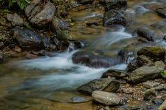 Cascada en pequeña corriente de la montaña Fotografía de archivo