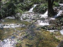 Cascada en primavera Imagen de archivo libre de regalías