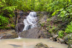 Cascada en selva tropical de la selva tropical Fotografía de archivo