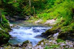 Cascada en Soteska vintgar, Eslovenia la garganta de Vintgar o Ble Imagen de archivo libre de regalías