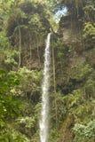 Cascada en Tanzania Foto de archivo libre de regalías