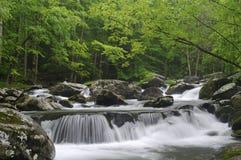 Cascada en Tremont en el parque nacional TN LOS E.E.U.U. de Great Smoky Mountains Imagen de archivo