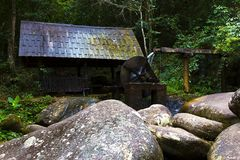 Cascada en turbina de la selva y del agua Fotografía de archivo libre de regalías