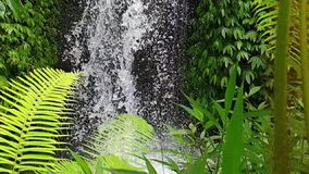 Cascada en Ubud, Bali almacen de metraje de vídeo