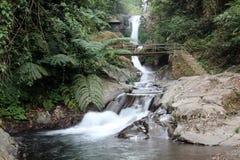 Cascada en un bosque Bali Foto de archivo libre de regalías