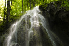 Cascada en un bosque verde Fotos de archivo libres de regalías