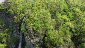 Cascada en una ladera demasiado grande para su edad con los bosques almacen de metraje de vídeo