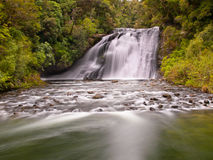 Cascada en una selva tropical enorme Fotografía de archivo libre de regalías