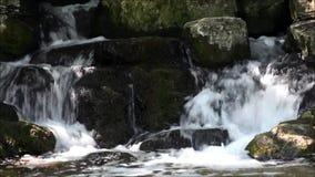 Cascada en Viktoriapark en Berlin Kreuzberg el 25 de junio de 2015, Alemania almacen de video