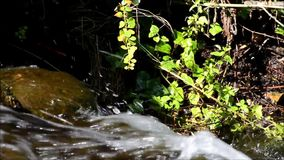 Cascada en Viktoriapark en Berlin Kreuzberg el 25 de junio de 2015, Alemania almacen de metraje de vídeo