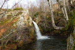 Cascada entre las rocas de la haya y el musgo fotografía de archivo