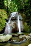 Cascada escénica del bosque Fotografía de archivo libre de regalías