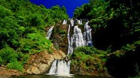 Cascada espumosa de la cascada de la montaña en parque tropical metrajes