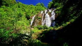 Cascada espumosa de la cascada del río de la montaña del primer en las zonas tropicales metrajes