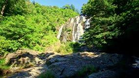 Cascada espumosa de la cascada del río de la montaña en las zonas tropicales metrajes