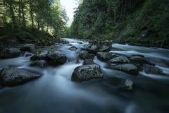 Cascada Fraser Valley del noroeste pacífico Foto de archivo